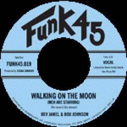 walking on the moon Lyrics of walking on the moon by janie fricke: mama i was walking on the moon last night, two loving arms held me tight, as the stars danced around so.